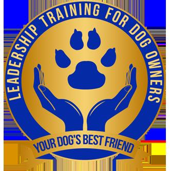 YDBF Logo